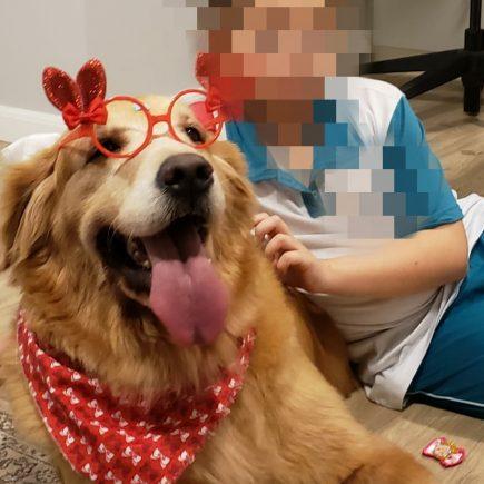 Terapia Assistida com Animais trabalhando em conjunto com a cão terapeuta Lola